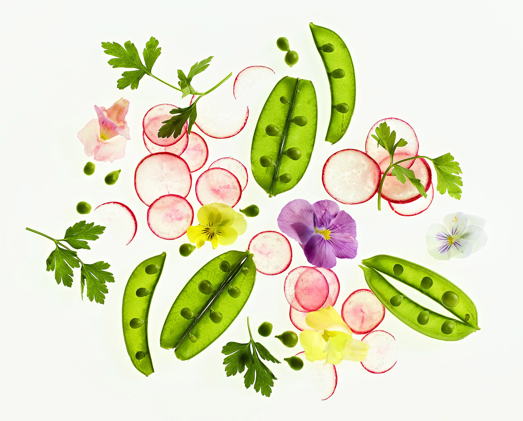 04-food_garden_salad-rotated