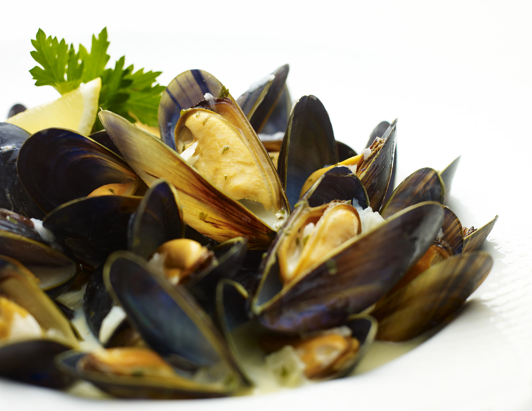 16-food_mussels_tabletable